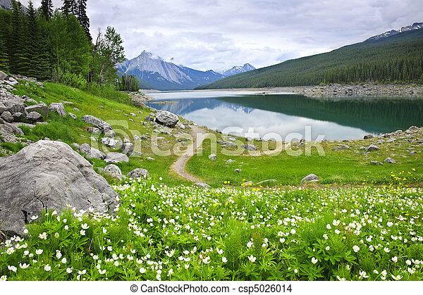 canada, montagna, nazionale, lago, parco, diaspro - csp5026014