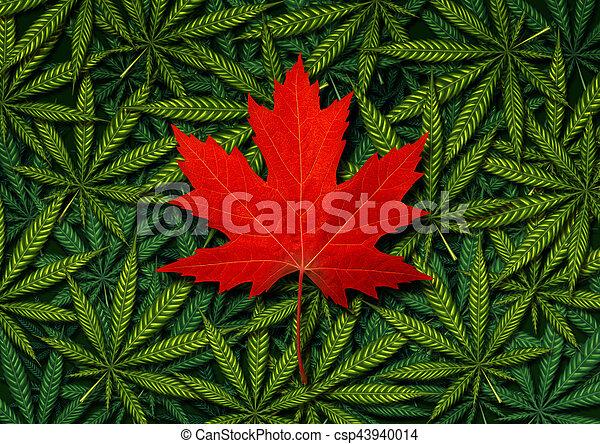 Canadian Marijuana Concept - csp43940014