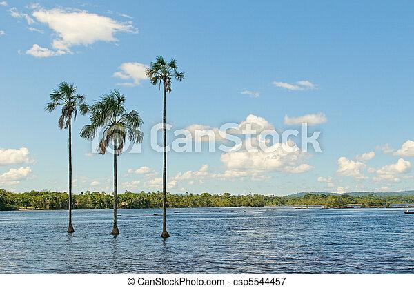 Canaima lagoon, Venezuela - csp5544457