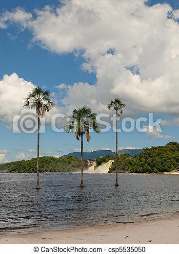 Canaima lagoon, Venezuela - csp5535050