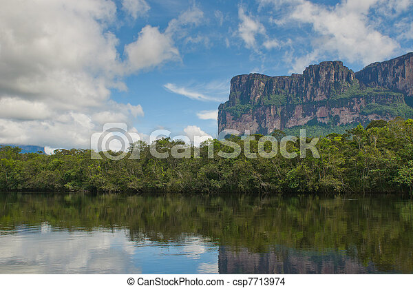 canaima, nemzeti, venezuela, liget - csp7713974