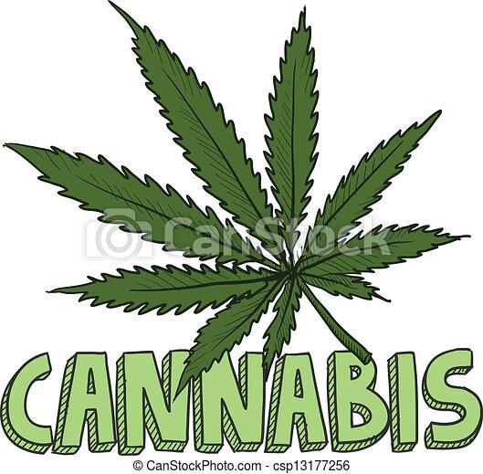 canapa, schizzo, marijuana - csp13177256