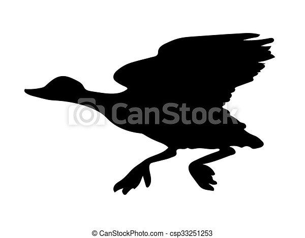 canard, oiseau, vecteur, silhouette - csp33251253