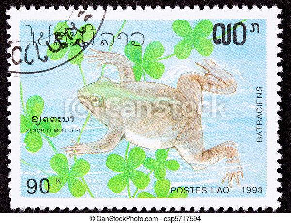 Canceled Laotian Postage Stamp Swimming Frog Muller's Platanna, Xenopus Muelleri - csp5717594