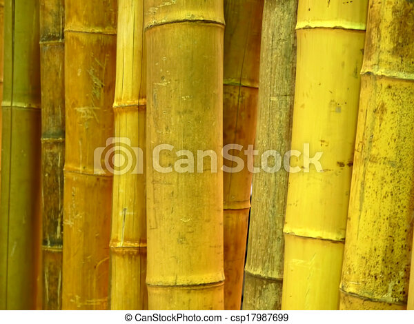 cec5de6becf7 Row upon row of bamboo cane background.