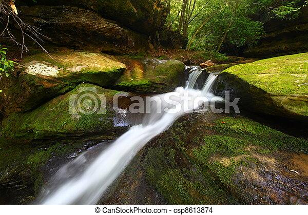 Caney Creek Falls - Alabama - csp8613874
