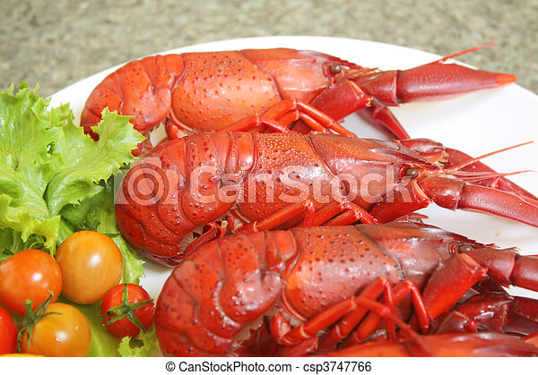 Crayfish - csp3747766