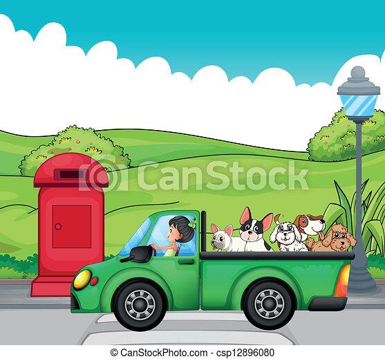 cani, verde indietro, veicolo - csp12896080