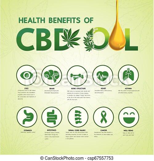 Cannabis benefits for health vector - csp67557753