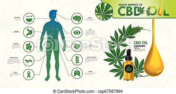 Cannabis benefits for health vector - csp67587994