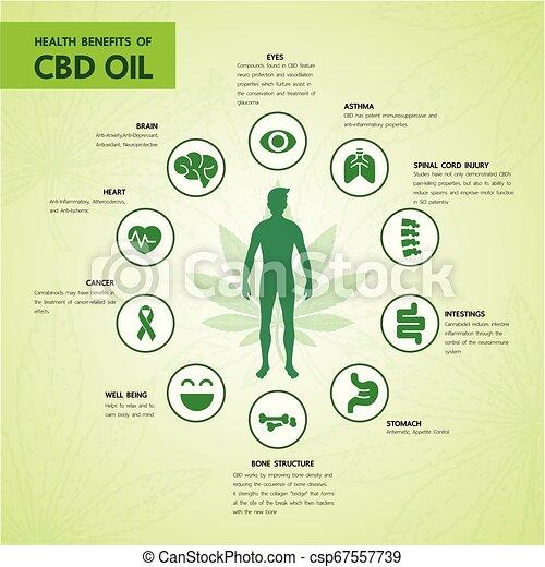 Cannabis benefits for health vector - csp67557739