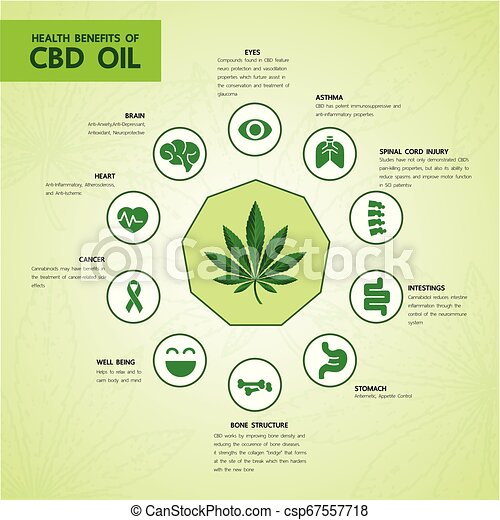 Cannabis benefits for health vector - csp67557718
