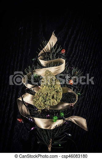 Cannabis dry bud over pine tree branch resembling a christmas tree - csp46083180