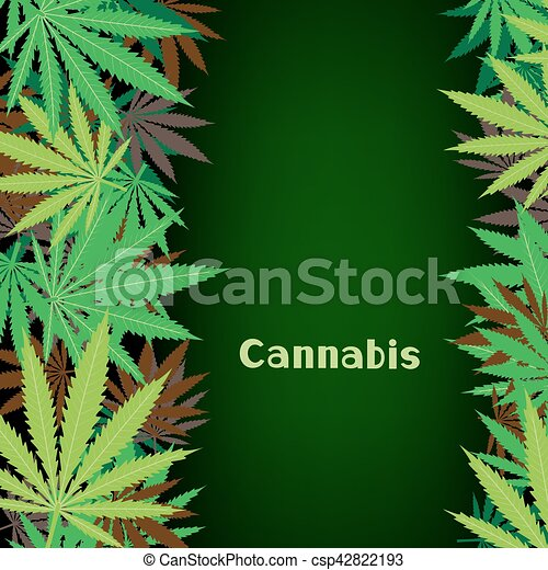 cannabis hemp background - csp42822193