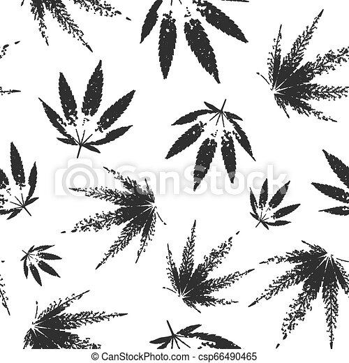 Cannabis seamless pattern design - black and white background with leaves of marijuana - csp66490465