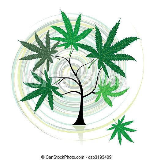 cannabis, træ - csp3193409