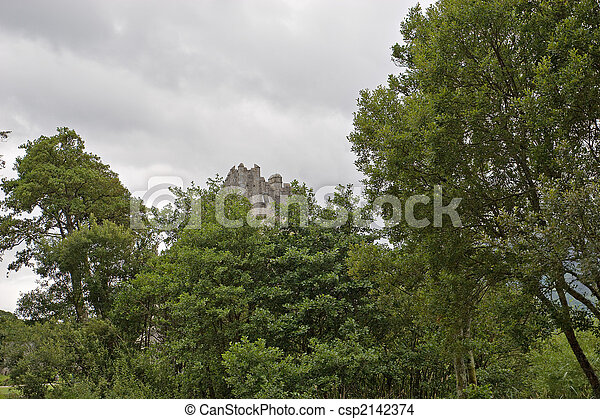 Can't see the castle for the trees - csp2142374
