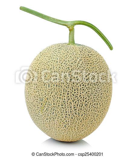 cantaloupe melon - csp25400201