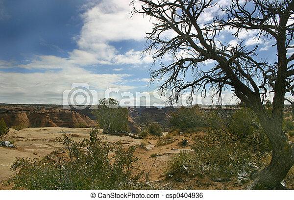 Canyon de Chelly - csp0404936
