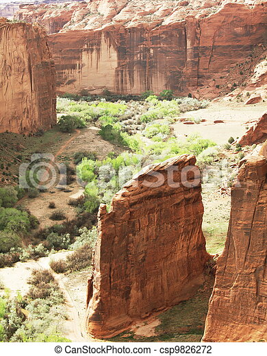 Canyon de Chelly - csp9826272