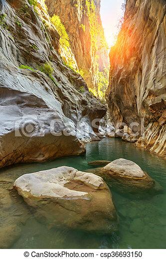 canyon - csp36693150