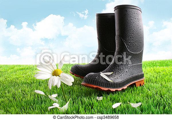 caoutchouc, herbe, bottes, pâquerette - csp3489658