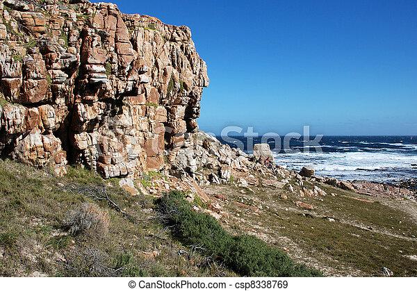 Cape of good Hope - csp8338769