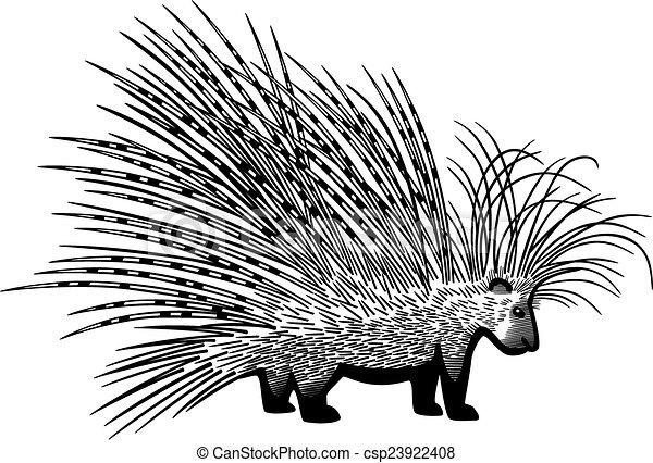 cape porcupine vector drawing of the cape porcupine rh canstockphoto com tree porcupine clipart porcupine fish clipart