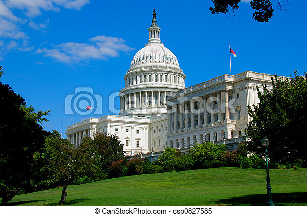 Capitol In Washington DC - csp0827585