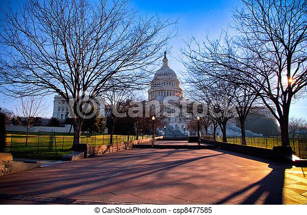 Capitol - csp8477585