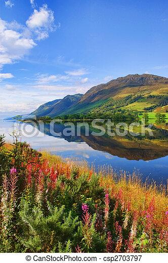 capture of vibrant nature landscape - csp2703797