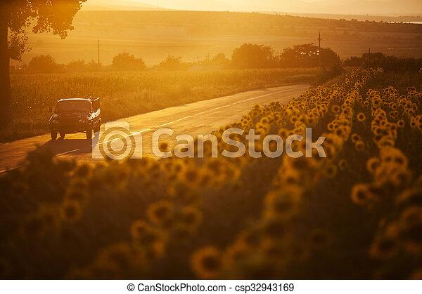 Car at sunset - csp32943169
