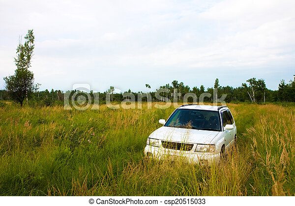 Car in a meadow - csp20515033