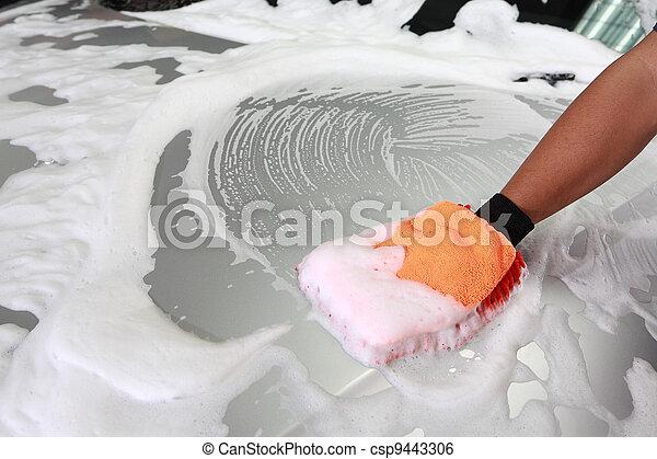 car wash detailing - csp9443306