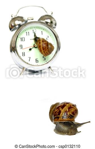 Hora del caracol - csp0132110