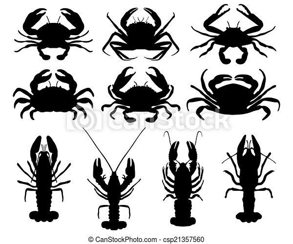 caranguejos - csp21357560