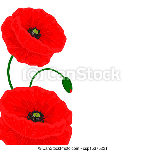 Card With Red Poppy Flowers On A White Background And Free Space