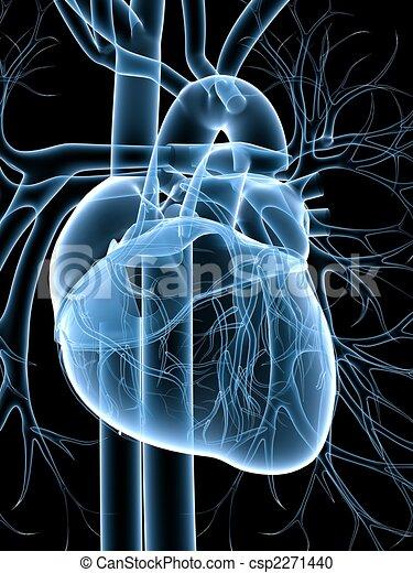 cardiovascular system - csp2271440