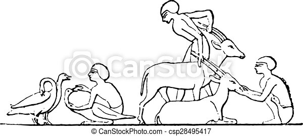Dog Clipart Bathtub The - Caring For Animals Clipart, HD Png Download - vhv