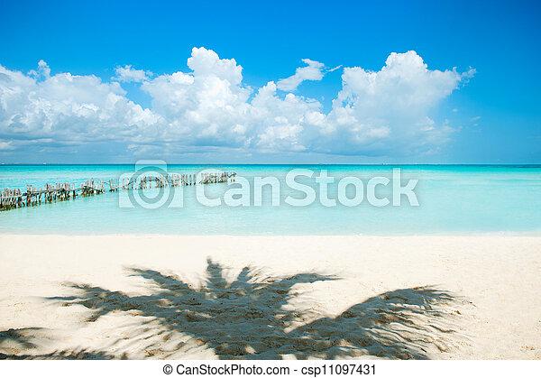 Caribbean Beach. White Sand - csp11097431