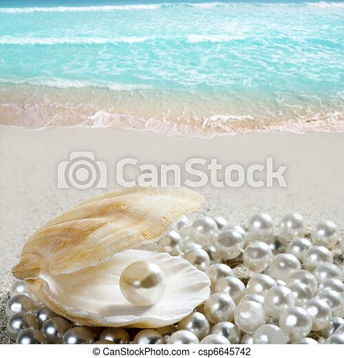Caribbean pearl on shell white sand beach tropical - csp6645742