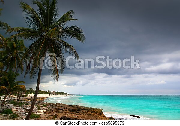Caribbean stormy day palm trees in Tulum Mexico - csp5895373