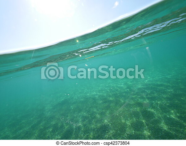 Mar Caribeño dividido nivel - csp42373804