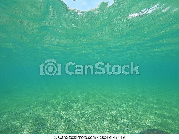 Mar Caribeño dividido nivel - csp42147119