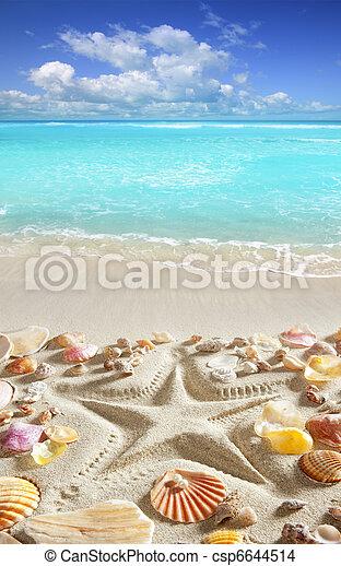 Los peces estrella de playa imprimen mar tropical Caribeña - csp6644514