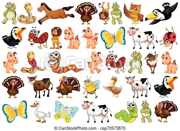 carino, set, animali - csp70573870