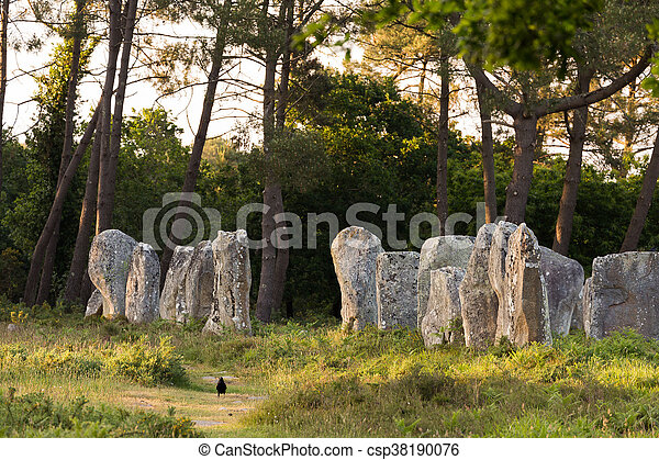 Carnac stones in Brittany - csp38190076