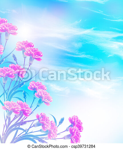 carnation flowers on a background of blue sky with clouds - csp39731284