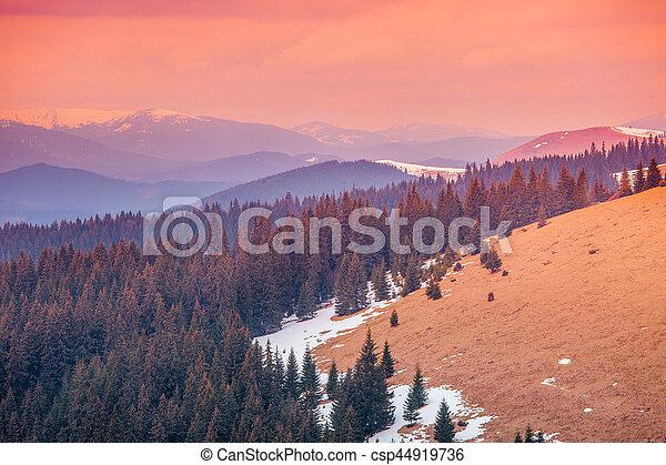 Carpathian mountains in winter time - csp44919736