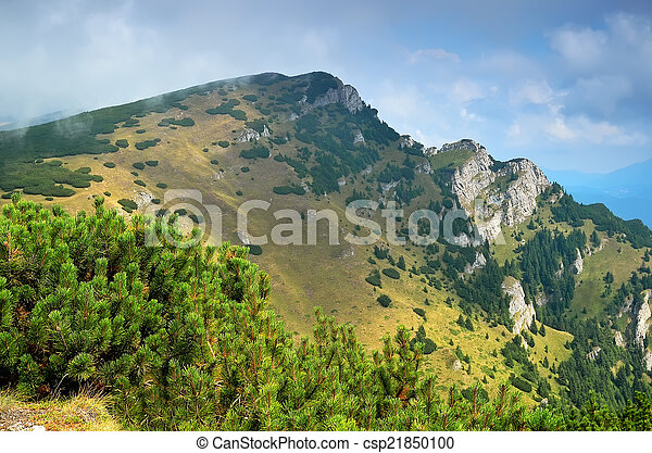 Carpathian mountains  - csp21850100